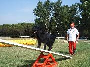 Mistr České republiky 2006